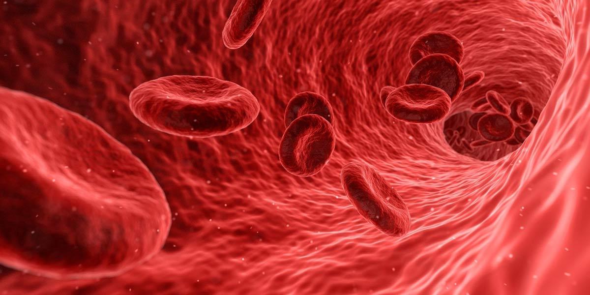 como mejorar tu sistema inmunitario